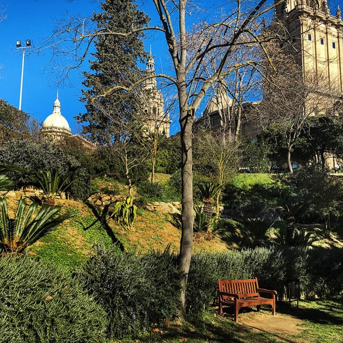carlacamprubi_jardinbotanicohistoricodebarcelona_paoladegrenet004