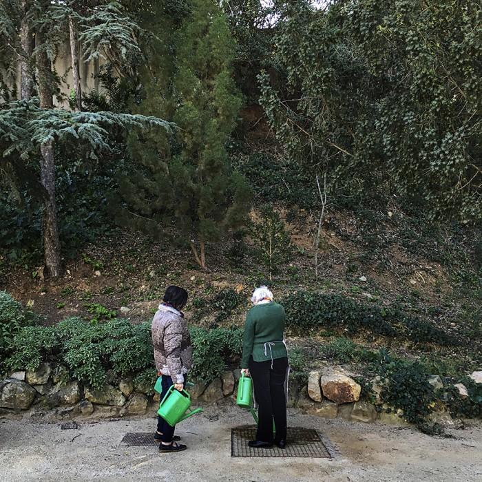 carlacamprubi_jardinbotanicohistoricodebarcelona_paoladegrenet017